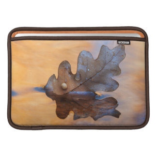 USA, New Mexico. Oak leaf in stream Sleeves For MacBook Air