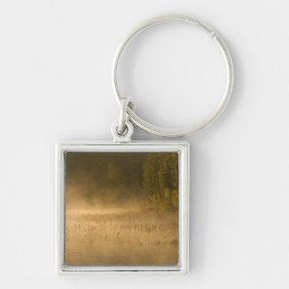 USA, New York, Adirondack Park. Sunrise mist on Silver-Colored Square Keychain