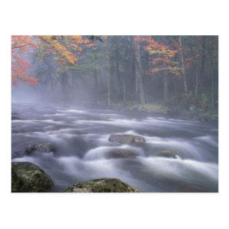 USA, New York, Adirondacks, Big Moose River Postcard