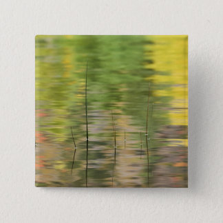 USA, New York, Adirondacks, Reflections in water 2 Inch Square Button