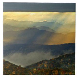 USA, North Carolina, Great Smoky Mountains. Tile