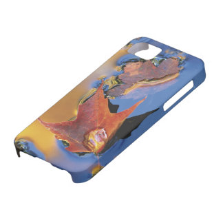 USA, Northeast, Maple Leaf in Reflection iPhone 5 Covers