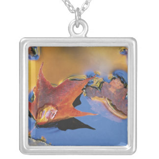 USA, Northeast, Maple Leaf in Reflection Square Pendant Necklace