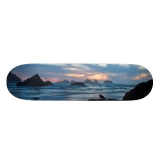 USA, Oregon, Bandon Beach. Seagull on rock Custom Skateboard