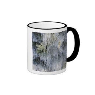 USA, Oregon, Bend. The ice on Ponderosa pine Ringer Coffee Mug
