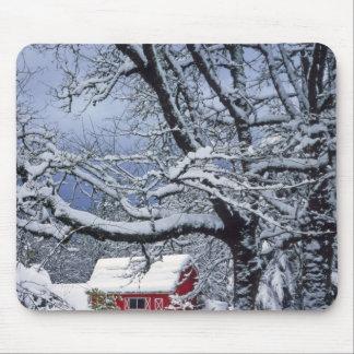 USA, Oregon, Clackamas County. Fresh snow covers Mouse Pad
