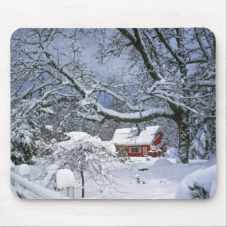 USA, Oregon, Clackamas County. Fresh snow Mouse Pad