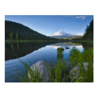 USA, Oregon, Clackamas County, View of Trillium 3 Postcard