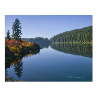 USA, Oregon, Clear Lake Postcard