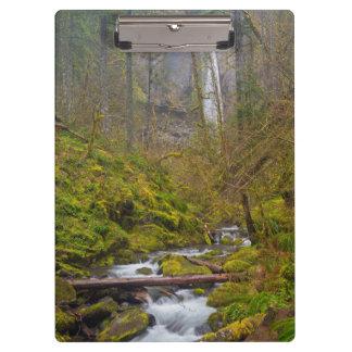 USA, Oregon, Columbia Gorge Clipboards