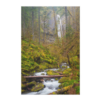 USA, Oregon, Columbia Gorge Stretched Canvas Prints