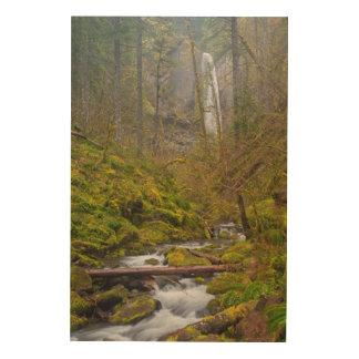 USA, Oregon, Columbia Gorge Wood Prints