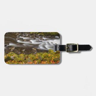 USA, Oregon, Columbia River Gorge, Tanner Creek 2 Luggage Tag