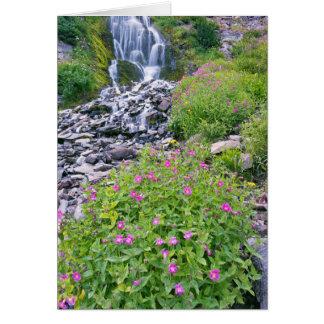 USA, Oregon, Crater Lake National Park Card