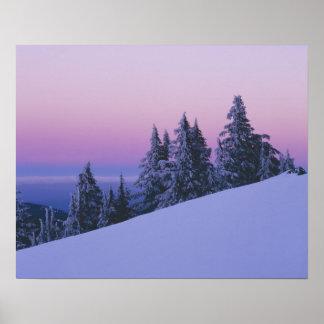 USA, Oregon, Deschutes National Forest, Dusk Poster
