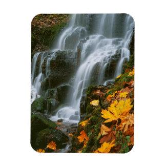 USA, Oregon, Fairy Falls, Columbia River Gorge Rectangular Photo Magnet