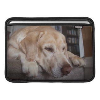 USA, Oregon, Keizer, Labrador Retriever Resting Sleeve For MacBook Air