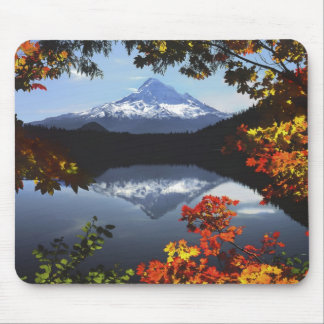 USA, Oregon, Mt. Hood National Forest. Mouse Pad