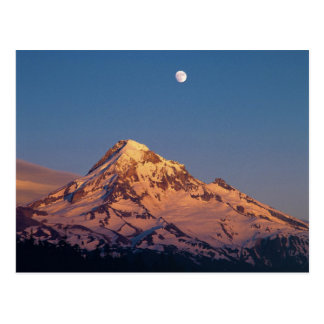 USA, Oregon, Mt Hood. Sunset creates alpenglow Postcard