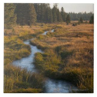USA, Oregon, Paulina Creek Tiles