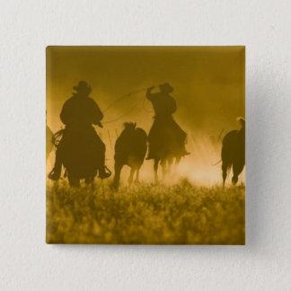 USA, Oregon, Seneca, Ponderosa Ranch. 3 2 Inch Square Button