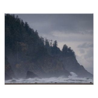 USA, Oregon, Tillamook County, Forest at coast Poster