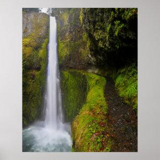 USA, Oregon. Top To Bottom View Of 130 Ft Print