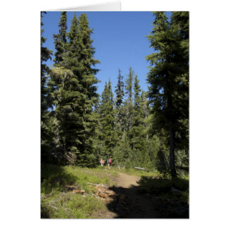USA, Oregon, Willamette National Forest, Fall Card