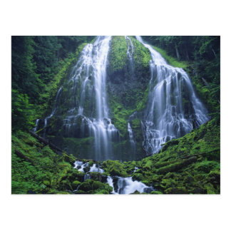 USA, Oregon, Willamette National Forest. View of Postcard