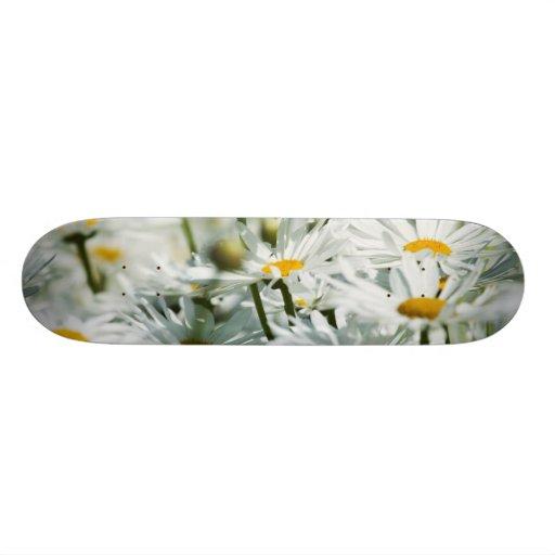 USA, Oregon, Willamette Valley, Selective Skate Board Deck