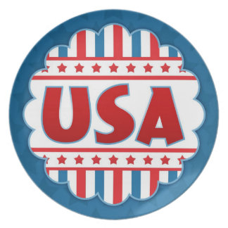 USA Patriotic Plate