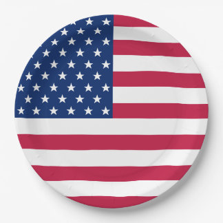 USA Patriotic Stripes Stars Flag Party Paper Plate 9 Inch Paper Plate