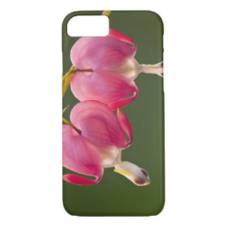 USA, Pennsylvania. Close-up of two bleeding iPhone 7 Case