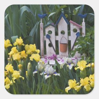 USA, Pennsylvania. Garden irises grow around Square Sticker