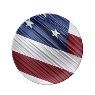 USA Red, White and Blue American Patriotic Flag Plate