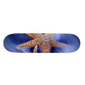 USA, South Carolina, Hilton Head Island. Two Custom Skateboard