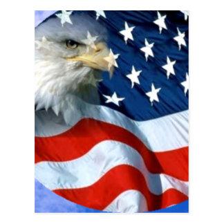 USA Spread it's Love_ Postcard