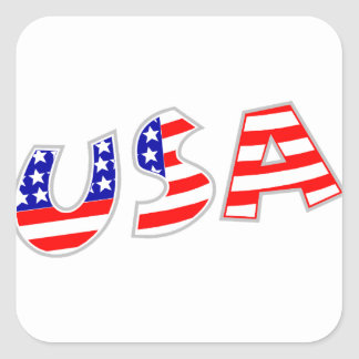 USA, squiggly Square Sticker