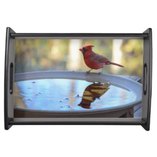 USA, Tennessee, Athens. Backyard Bird Bath 2 Serving Tray