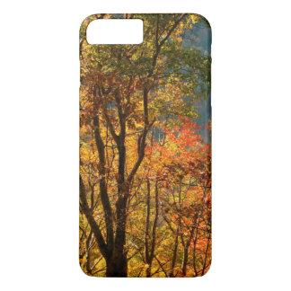 USA, Tennessee. Fall Foliage iPhone 7 Plus Case