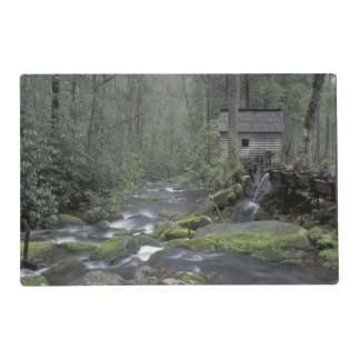 USA, Tennessee, Great Smoky Mountains National 3 Laminated Placemat
