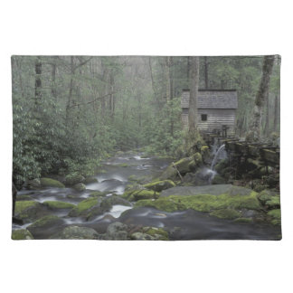 USA, Tennessee, Great Smoky Mountains National 3 Place Mat