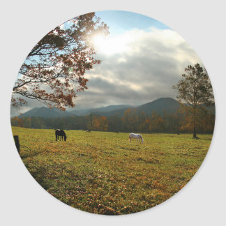 USA, Tennessee. Horses In Cades Cove Valley Classic Round Sticker
