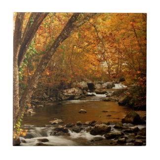 USA, Tennessee. Rushing Mountain Creek 3 Ceramic Tile