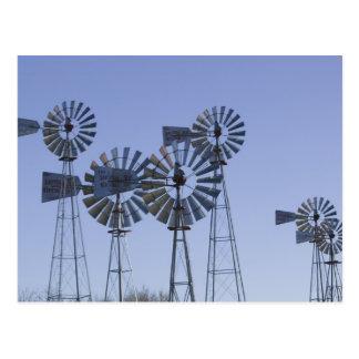 USA, TEXAS, Lubbock: American Wind Power Center Postcard