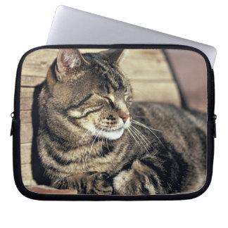 USA, Utah, Capitol Reef NP. Sleeping tabby cat Computer Sleeves