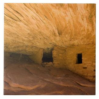 USA, Utah, Cedar Mesa, Mule Canyon. Sandstone Tile