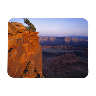USA, Utah, Dead Horse Point SP. Late light turns Rectangular Photo Magnet