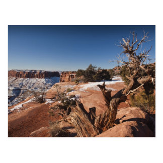 USA, Utah, Moab. Canyonlands National Park, Postcard