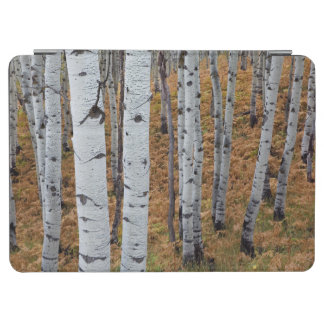USA, Utah, Uinta-Wasatch-Cache National Forest 2 iPad Air Cover